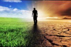 Зачем нужны экологические изыскания?