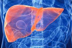 Чем лечат гепатит?