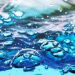 Где доставка воды в спб предлагается на выгодных условиях?