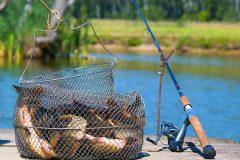 Кто увлекается рыбалкой?